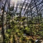 HDR-植物園