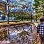 HDRさくら公園