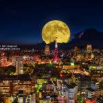HDRさきさん東京タワー